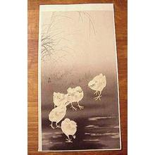 Shoson Ohara: Unknown, Chicks With Worm - Japanese Art Open Database