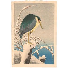 Shoson Ohara: Unknown bird - Japanese Art Open Database