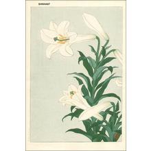 Shoson Ohara: White lilies - Japanese Art Open Database