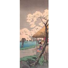 Shotei Takahashi: Cherry Blossoms at Sumida Bank in Rain - Japanese Art Open Database