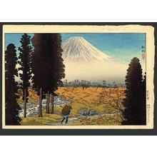 Shotei Takahashi: Fuji from Gumisawa - Japanese Art Open Database