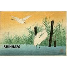 Shotei Takahashi: Two Egrets - Japanese Art Open Database