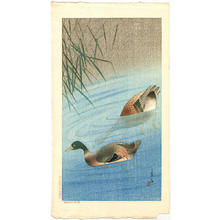 Soseki Komori: Mallard Ducks - Japanese Art Open Database