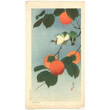 Soseki Komori: White-eyes and persimmon - Japanese Art Open Database
