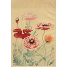 Suiko Fukuda: Poppies - Japanese Art Open Database