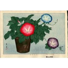 Taisui Inuzuka: Morning Glories - Japanese Art Open Database