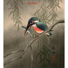 Takahashi Biho: Kingfisher - Japanese Art Open Database