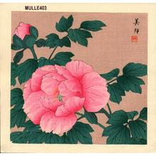 Takahashi Biho: Peony - Japanese Art Open Database