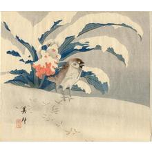 Takahashi Biho: Unknown bird in snow - Japanese Art Open Database