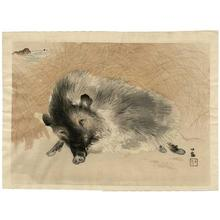 Takeuchi Seiho: Boar - Japanese Art Open Database