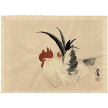 Takeuchi Seiho: Rooster - Japanese Art Open Database