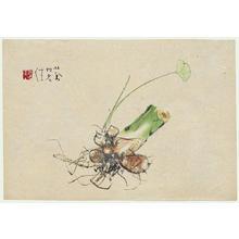 Takeuchi Seiho: Bulbs and Foliage - Japanese Art Open Database