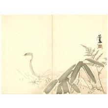 Takeuchi Seiho: Snake - Japanese Art Open Database
