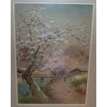 Terauchi Fukutaro: Cherry trees by river with bridge in rain - Japanese Art Open Database