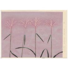 Tokuoka Shinsen: Pampas Grass - Japanese Art Open Database