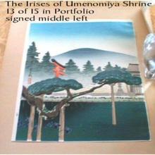 Tokuriki Tomikichiro: The Irises of Umenomiya Shrine - Japanese Art Open Database