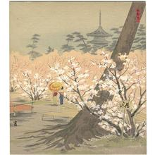 徳力富吉郎: Cherry Trees at Omuro — 御室の桜 - Japanese Art Open Database