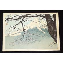 Tokuriki Tomikichiro: Mt Fuji and Cherry Tree - Japanese Art Open Database