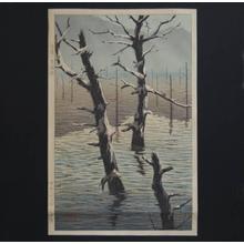 Tomoichi Fujisawa: Lake Taisho at Shinano — 信濃大正池 - Japanese Art Open Database