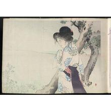 Mizuno Toshikata: Evening Plover — 小夜千鳥 - Japanese Art Open Database