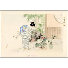 Mizuno Toshikata: Watering plants - Japanese Art Open Database