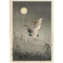 風光礼讃: Ducks — 鴨 - Japanese Art Open Database