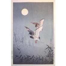風光礼讃: Ducks — 鴨 - Japanese Art Open Database