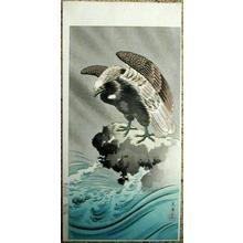 Tsuchiya Koitsu: Eagle - Japanese Art Open Database