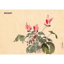 Tsuchiya Koitsu: Floral - Japanese Art Open Database