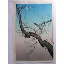 Tsuchiya Koitsu: Plum Nightingale- Oban - Japanese Art Open Database