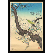 風光礼讃: Plum Nightingale - Japanese Art Open Database
