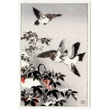 Tsuchiya Koitsu: Sparrows - Japanese Art Open Database
