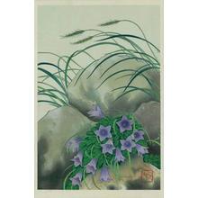Unknown: Bell Flowers - Japanese Art Open Database