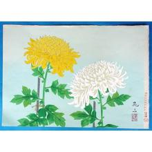 無款: Two chrysanthemums - Japanese Art Open Database