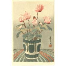 Urushibara Mokuchu: Cyclamen growing in a decorated pot - Japanese Art Open Database
