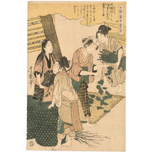 Kitagawa Utamaro: Women spreading mulberry leaves on the silkworms - Japanese Art Open Database