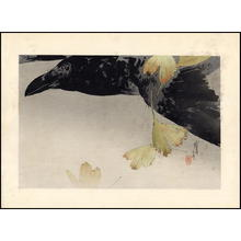 Watanabe Seitei: Crow - Japanese Art Open Database