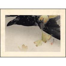 Watanabe Seitei: Crow - Japanese Art Open Database