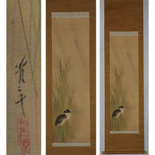 Watanabe Seitei: Two Birds in Tall Grass - Japanese Art Open Database