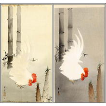 Yamamoto Shoun: White Cockerel - Japanese Art Open Database