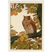 Yoshida Toshi: Mimizuki - Eagle Owl - Japanese Art Open Database