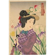 月岡芳年: Enjoying a stroll- A Lady of the Meiji Era — 遊歩がしたそう - Japanese Art Open Database