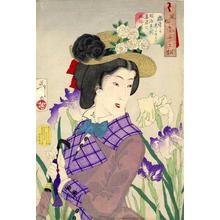Tsukioka Yoshitoshi: Enjoying a stroll- A Lady of the Meiji Era — 遊歩がしたそう - Japanese Art Open Database