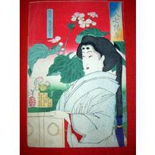 Tsukioka Yoshitoshi: Madenokouji Sachiko — 従四位萬里小路幸子 - Japanese Art Open Database