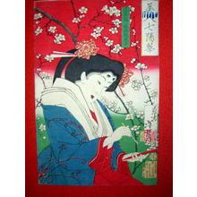Tsukioka Yoshitoshi: Nishinotouin Shigeko — 正五位西洞院成子 - Japanese Art Open Database