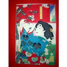 Tsukioka Yoshitoshi: Yanagiwara Naruko — 正五位柳原愛子 - Japanese Art Open Database