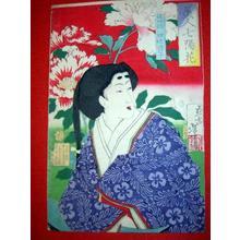 Tsukioka Yoshitoshi: Yotsutsuji Kiyoko — 従四位四辻清子 - Japanese Art Open Database