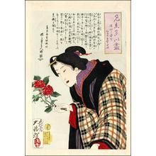 Tsukioka Yoshitoshi: A bijin making an Ikebana flower arrangement - Japanese Art Open Database