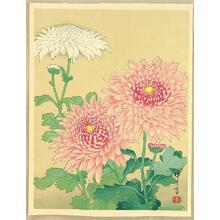 Zuigetsu Ikeda: Chrysanthemums - Japanese Art Open Database