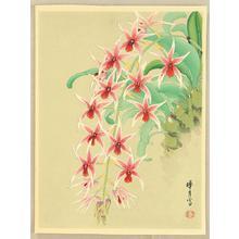 Zuigetsu Ikeda: Orchid 2 - Japanese Art Open Database